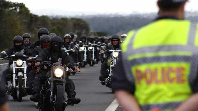 The Newman Government has outlaw bikie gangs in its sights, with a new dob-in-a-bikie scheme and promises of support for the CMC.