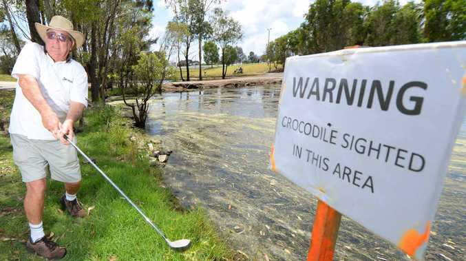 WARNING: Alwyn Yearby is still keen to get on the golf course at the Capricorn Country Club, despite the fact that a crocodile was spotted in the area.