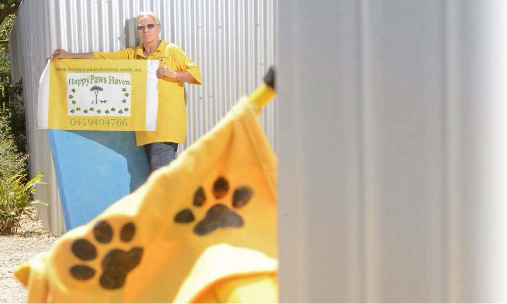 JUST THE FACTS: Sally Rogers with the Happy Paws signs she is using to counter signs put up around her Eatonsville property. Photo: Adam Hourigan
