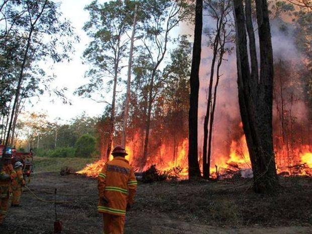 Firefighters brace the heat on the fire front near Glenreagh.