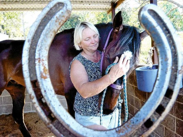 GOOD CHANCE: Lismore trainer Sharon Pepper with Bingo Bobby. The four-year-old will race in a class 2 handicap at the Grafton meeting this afternoon.
