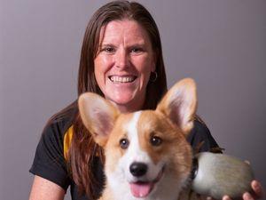 Pet owners beware, tick menace is heating up