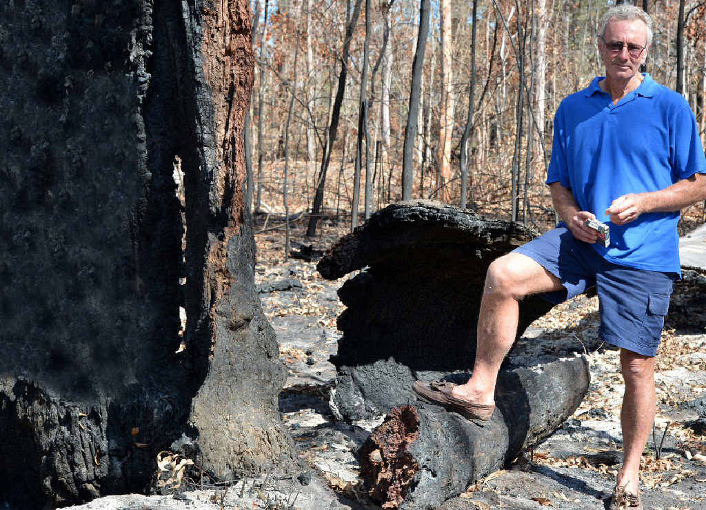 PUT IT OUT: Harry Amore stands in the burnt-out landscape of last week's Curra blaze, believed to have been sparked by a burning cigarette butt thrown out a car window.