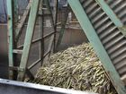 MILLAQUIN: Fresh cane arrives at the Mill to be processed into sugar. Photo: Simon Young / NewsMail