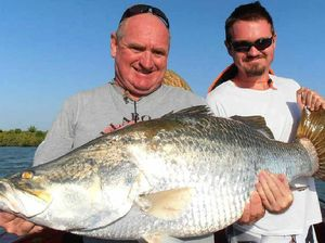 Barramundi coastal fishing ban in place from noon today