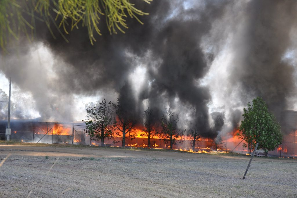 FIERY END: Flames engulfed the piggery with rescue crews unable to save many animals. Photo Katherine Kokkonen / Central and North Burnett Times