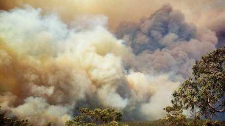 Smoke from a bushfire billows towards the New South Wales town of Windang :Photo Contributed
