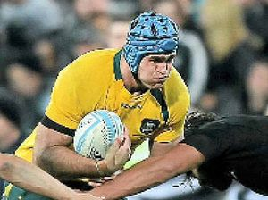 Wallabies warn of plan to attack