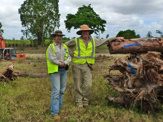 ENGINEERING CHANGE: Dr Andrew Brooks (right) from Griffith University and Dr Kate Steel from the Pioneer Catchment and Landcare Group prepare to construct three log jams in Owens Creek, near Gargett.