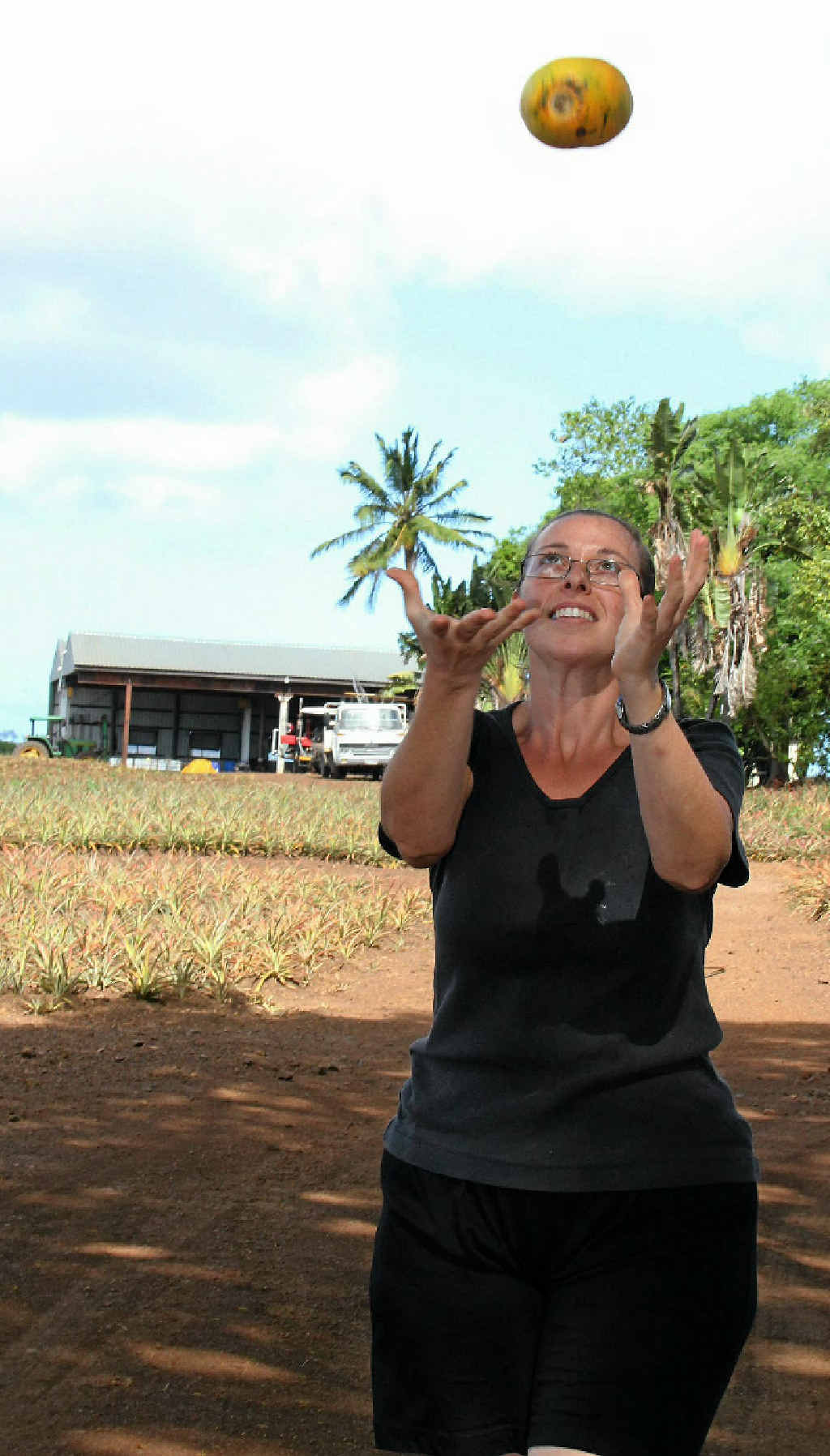 Genny Mazzoni has been working on a papaw farm at Hay Point and strawberry farms in Mackay for the past year. AgriTourism in the region is facilitated through the Mackay Language College.