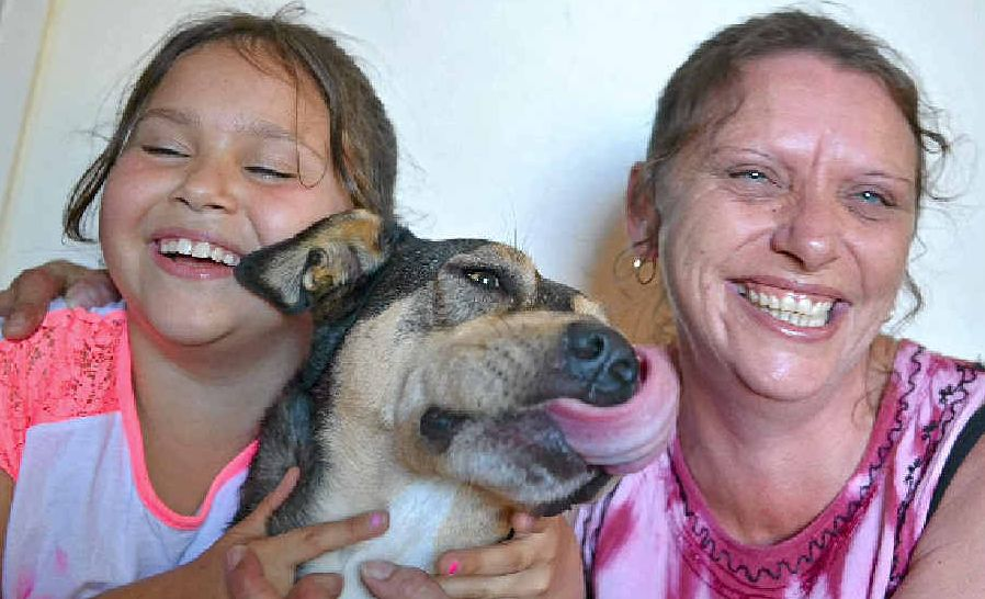 Annie Ramanauskas and her daughter Tahlia cuddle Roxy Dog after the kelpie saved Annie from a possible attack by a brown snake.
