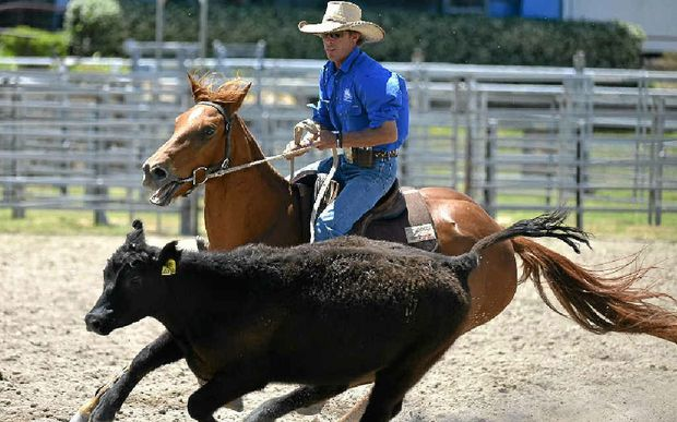 Collinsville rider Jason Wanstall on Playgirl, one of the six horses he is riding in this week's campdrafting.