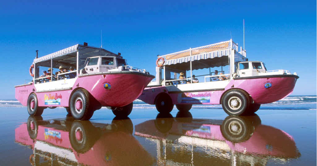 DOUBLE THE FUN: Photos like this of big pink LARCs on the beach at Bustard Bay could be a winner.