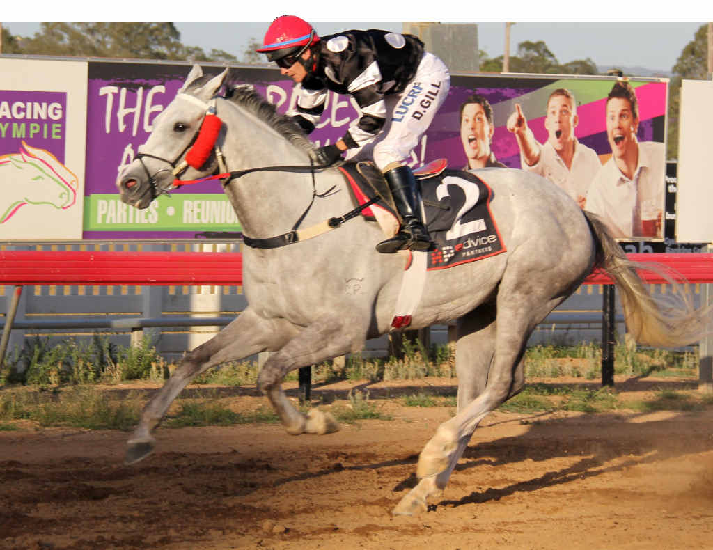 Jockey Desiree Gill racing to victory on Troilus Fuse at Saturday's River Junction Gympie Cup.