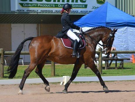 Glennie equestrian rider Lizzie Buchanan at the National Interschools Equestrian Championships.