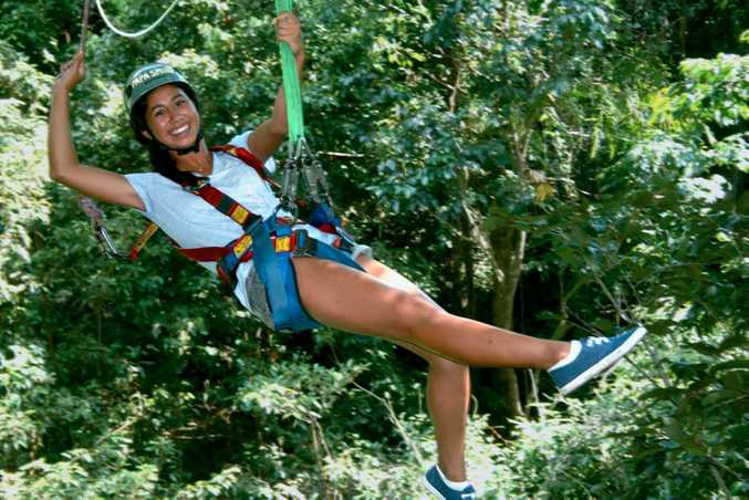 Expressions of interest are open for a Sunshine Coast zipline canopy tour.
