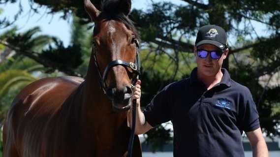 Hayden Plowman with horse Heroic Action.