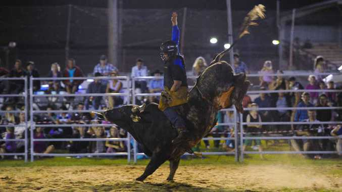 HANGING TOUGH: Bull rider Mitch Freeman holds on during the Jacaranda Rodeo at the Grafton Showgrounds on Saturday night. Photo: JoJo Newby