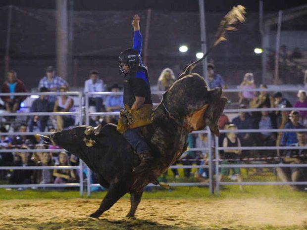 HANGING TOUGH: Bull rider Mitch Freeman holds on during the Jacaranda Rodeo at the Grafton Showgrounds on Saturday night. Photo: JoJo Newby