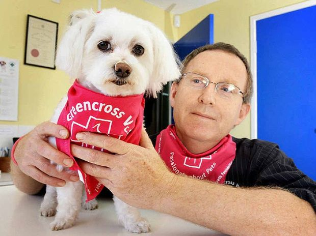 HEALTH CHECK: Veterinary surgeon Dr Tony Snell, with Missy Malone,encourages pet owners to examine their pets for lumps.