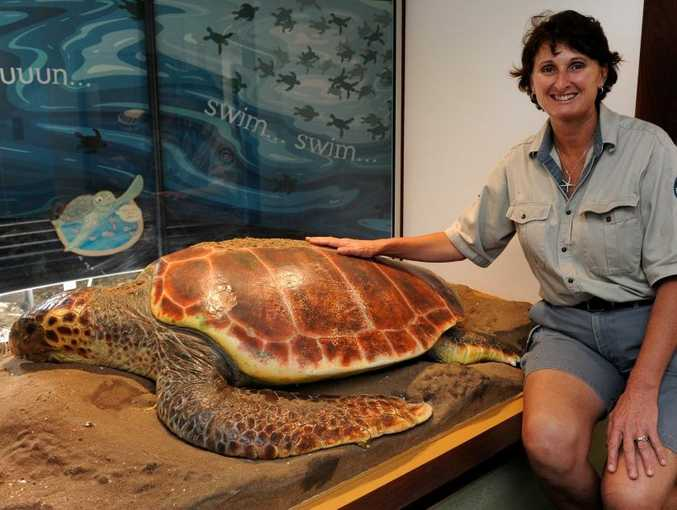 TURTLE TOURS: Ranger Lisa Emmert at the Mon Repos turtle rookery. Turtle tours start on Saturday night. Photo: Mike Knott / NewsMail