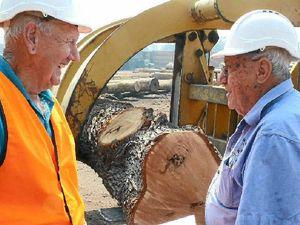 Log's final cut gets tender touch