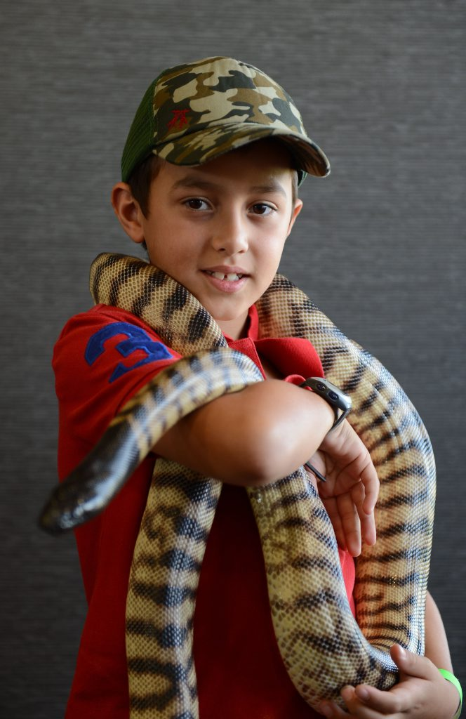 JJ Gambaro with a snake at the annual Scales and Tails Festival at North Ipswich Reserve on Saturday. Photo: Sarah Harvey / The Queensland Times