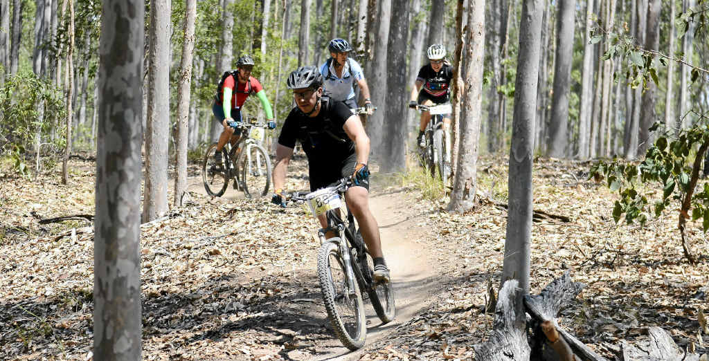 ON THEIR BIKES: Mountain bike G-BomB participants navigate the course during the race at Bom Bom State Forest on Saturday. PHOTO: DEBRA NOVAK