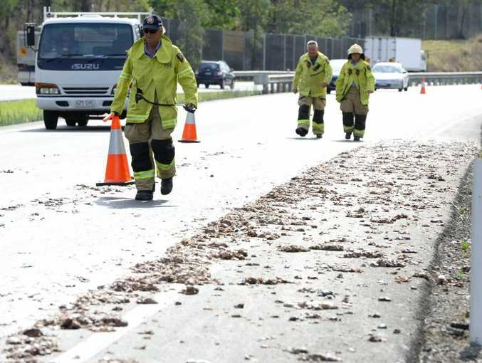 Offal littered the Warrego Highway near Kholo on Monday afternoon.