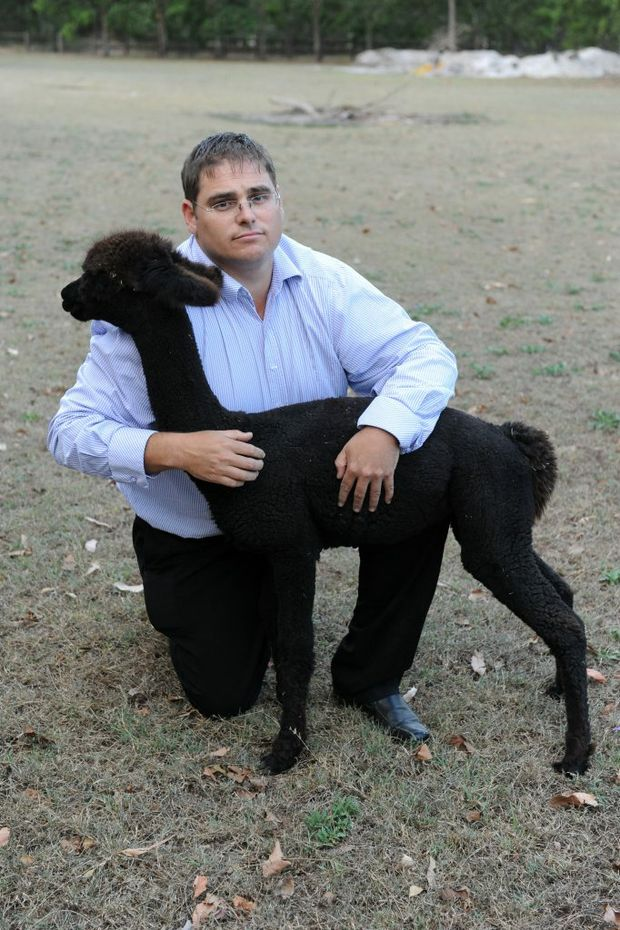 FERAL DOGS: Luke Samways with his Alpaca named Cleopatra, sister to Jet, who was mauled to death by two Malamute dogs. Photo: Mike Knott / NewsMail