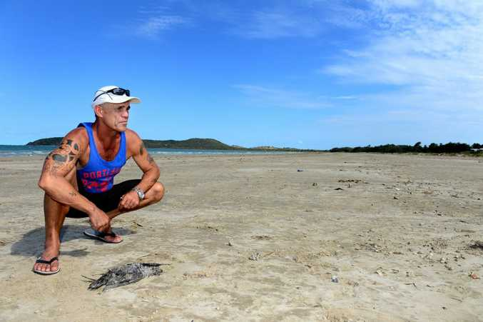 Grant Norton with one of more than a dozen dead birds found on Kinka Beach this week. Photo Sharyn O'Neill / The Morning Bulletin