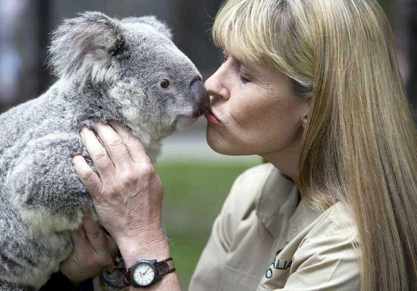 CUTE AS A BUTTON: One of the koalas at Australia Zoo receives a smooch from Terri.