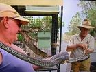 Snake catcher Roy McGrath (right) with a carpet snake that slipped inside a cage to eat a cockatoo and then couldn't get out.