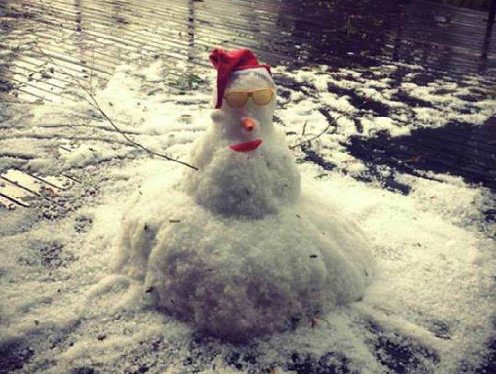 Anyone dreaming of a white Christmas could have been forgiven for thinking it had come early on Sunday when enough hail fell at Abbie Fearnley's home at Glastonbury to build a snowman.