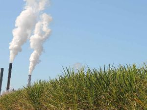 Crunch time for Mackay Sugar's recovery plan