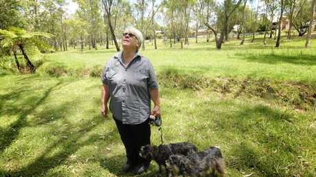 Toowoomba Regional Council plan to build a detention basin in Garnett Lehman Park. Local resident, Jenny Wilson with dogs Raffi and Callie are regular users of the park.