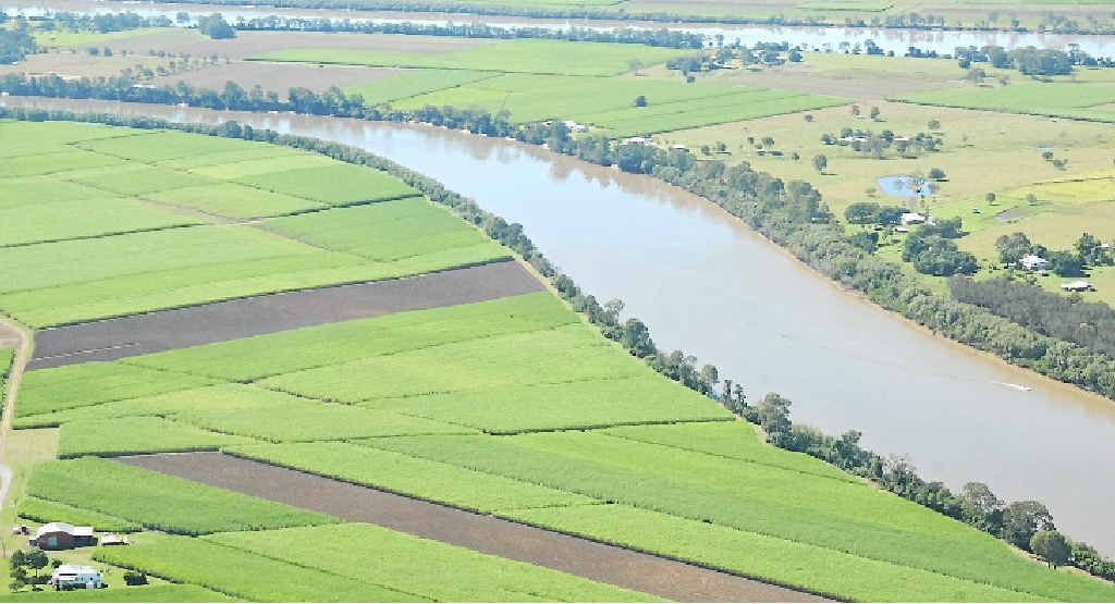 HELP: Agriculture is a growing business on the Fraser Coast which has just set up an advisory group.