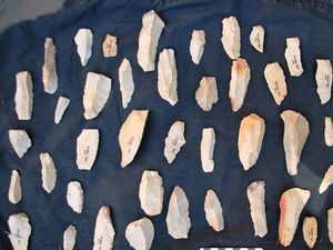 Unearthing the tools of Australia's first inhabitants
