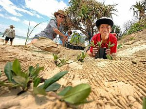 Community groups band together to save Dunes