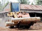 Sawmill workers in limbo