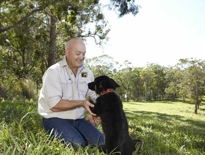 Dog trainer Scott Donald has created a DIY dog training app in response to dog attacks. More than 25 deaths from dog attacks in Australia since 2000. He fears modern dog owners mollycoddle their dogs, aren't firm and use too many treats as rewards for good behaviour. He says too many families buy performance dogs (such as cattle breeds) from breeders in an unregulated industry and aren't taught how to handle them. Photo: contributed.