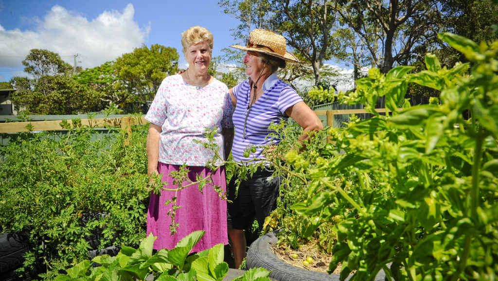 INVOLVED: Iluka Meals on Wheels' Marion Kurz and Iluka Community Garden's Linda Marney with some of the vegies in the garden. Photo JoJo Newby