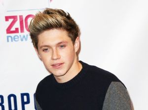 Niall Horan begs fans to stop throwing objects