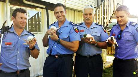 Acting Station Officer Jed Crosby and his crew from Ripley Fire Station rescued four tiny kittens trapped within a residential roof. Photo: Contributed