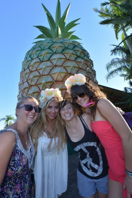 Big Pineapple Music festival. Sherry Crowley. Jackie Sahagian, Beth Crowley and Carrie-ann Letcher Photo: John McCutcheon / Sunshine Coast Daily