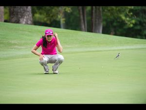 Cream rises to the top in Bonville Champions Trophy