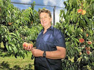 Growers battle pesticide ban