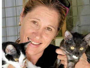 Roadworks a big turnoff for animal refuge visitors