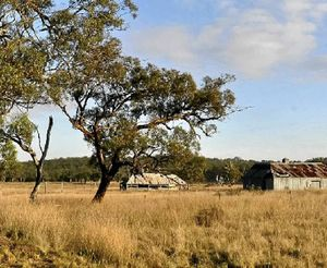 STANDING STILL: The Pikedale shearing shed and quarters.