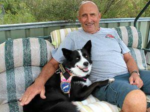 Dogs help war vets cut stress